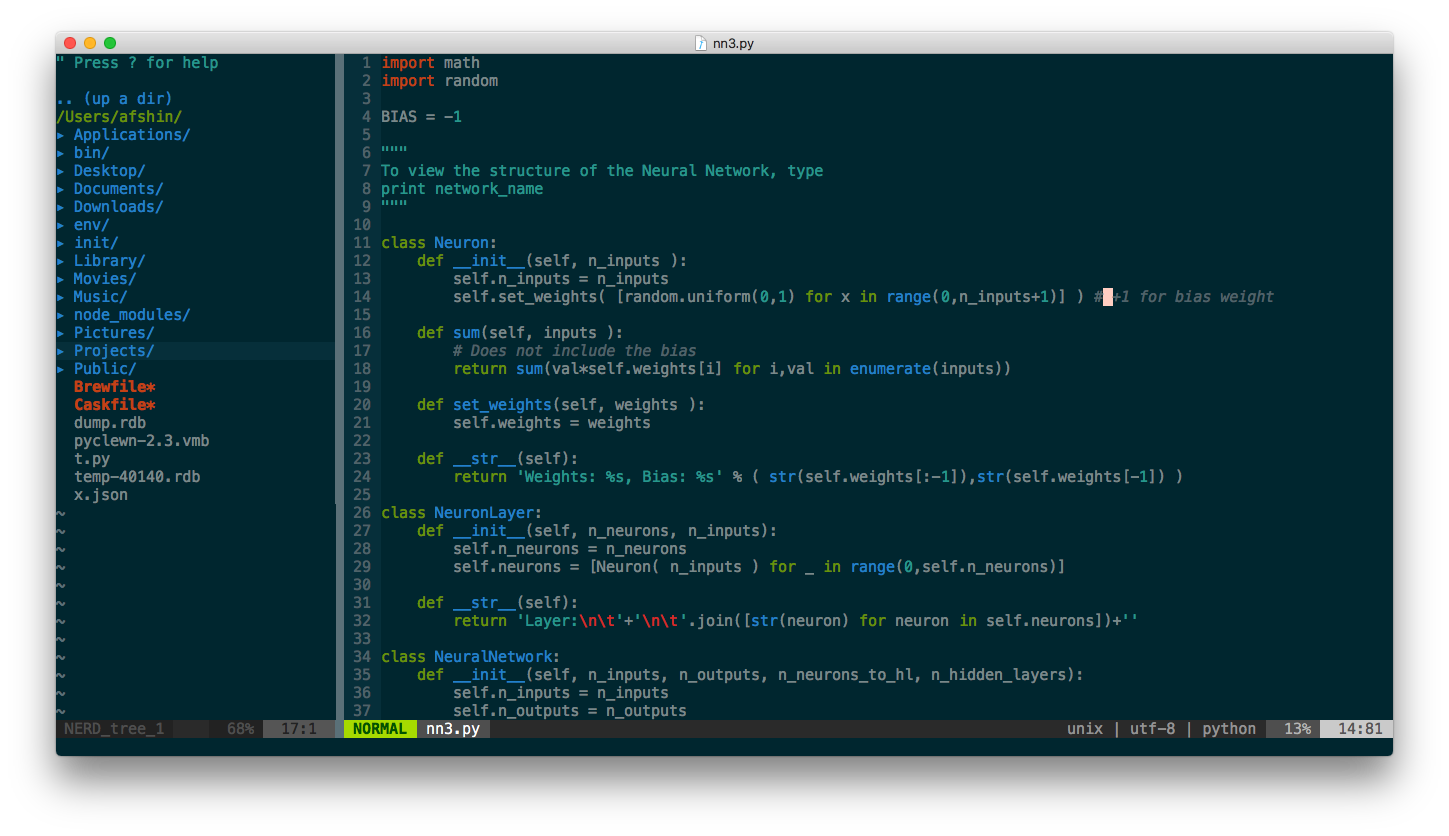 Neovim on Mac OS